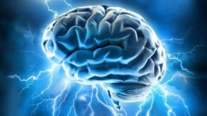 Brain electricity