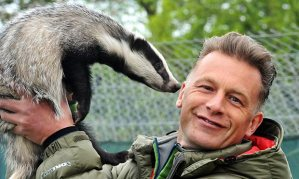 Chris Packham and badger