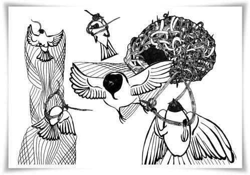 Southern masked weavers