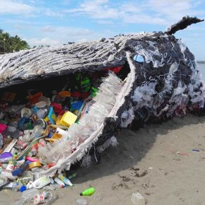 It's not me, it's you. How to dump plastic (for a month)