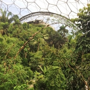 Reaching new heights: camping out in the EdenProject