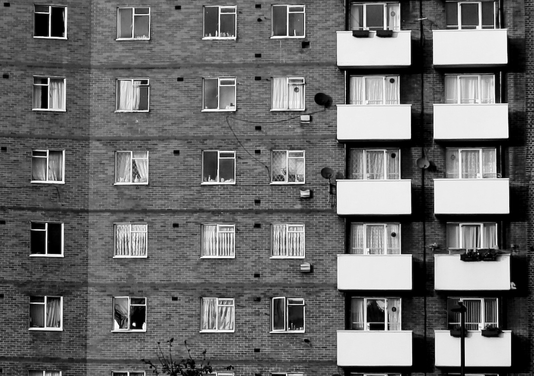 Flock of flats in black and white